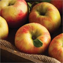 Honeycrisp product image.