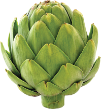 Large Fresh Artichokes product image.