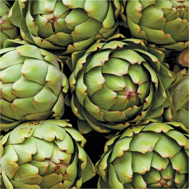 Fresh Tender Artichokes product image.