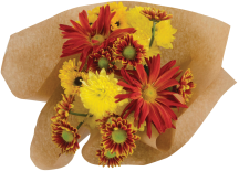 Beautiful Day's Bouquet product image.