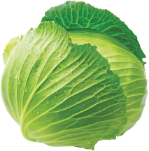 Green Cabbage product image.