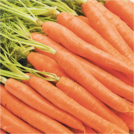 2 lb. Bag Carrots product image.