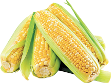 Corn on the Cob product image.