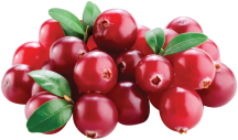 Cranberries product image.