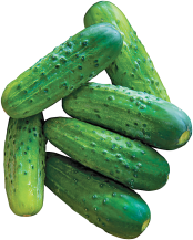 16 oz. pkg. Mini Cucumbers product image.