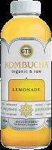 Kombucha product image.