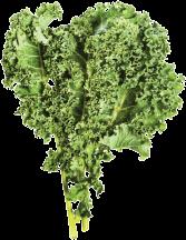 Kale product image.