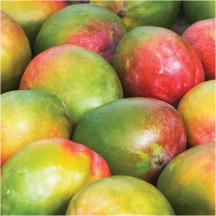 Mangoes product image.