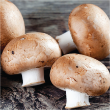 Crimini Mushrooms product image.