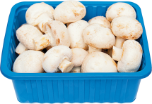 8 oz. Whole or Sliced Mushrooms product image.