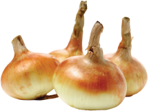 Large Sweet Vidalia Onions product image.
