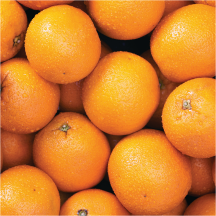 Chilean Navel Oranges product image.