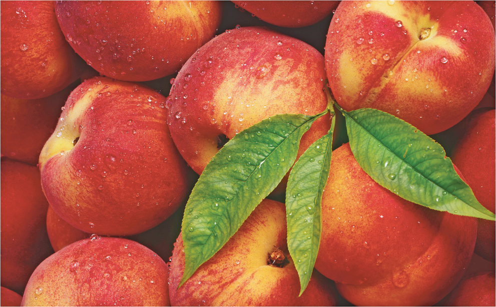 Yellow or White Flesh Peaches or Nectarines product image.