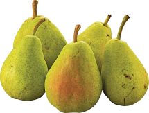 D'Anjou Pears product image.