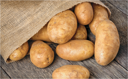 5 lb. Bag Russet Potatoes product image.