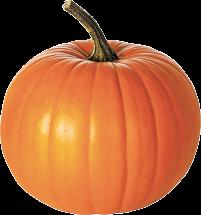 Pumpkins product image.