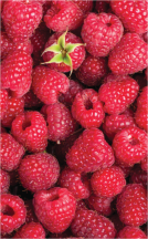 Strawberries product image.