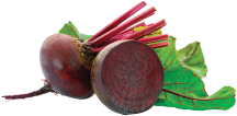 Fresh Assorted Organic Beets or Chard product image.