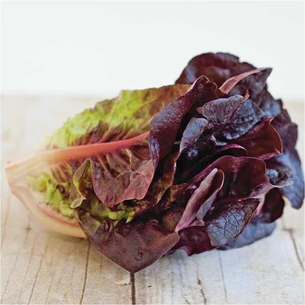 Organic Red or Green Leaf Lettuce product image.