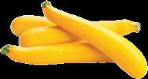 Yellow Zucchinni Squash product image.