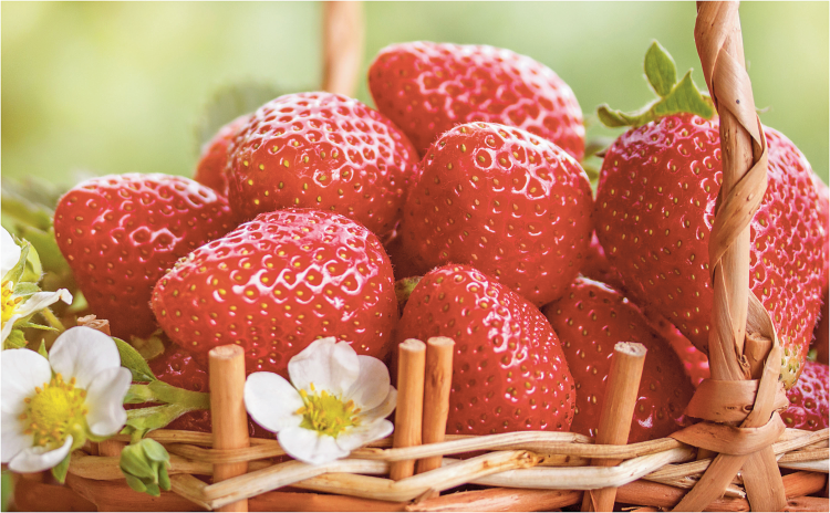 1 lb. Package Strawberries product image.