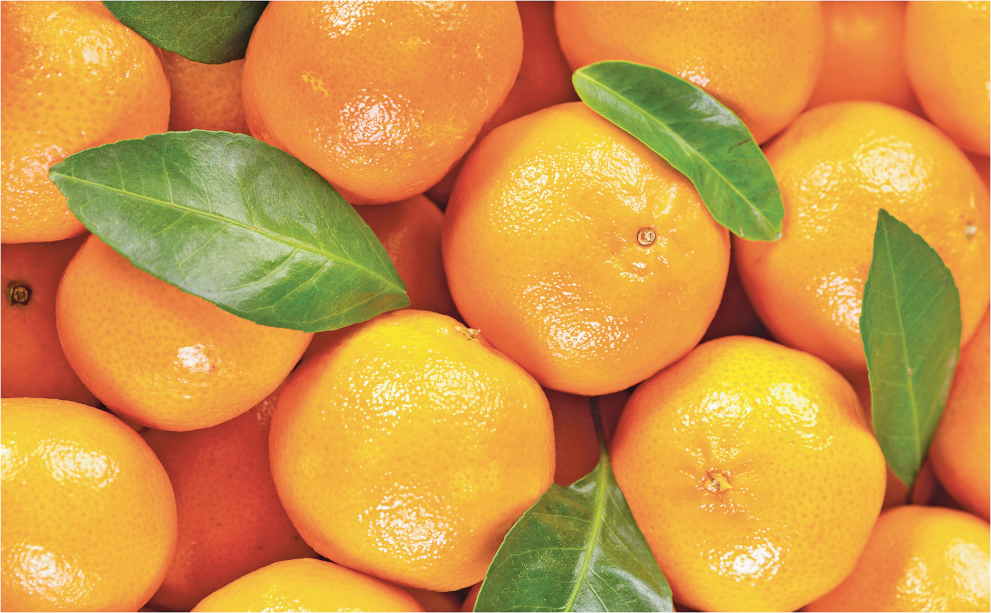 3 lb. Bag Mandarin Tangerines product image.