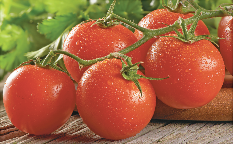 Hot House Organic Tomatoes product image.