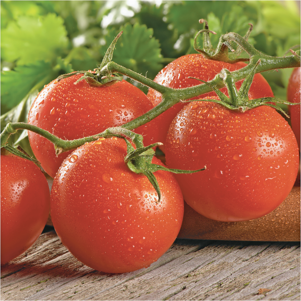 If the Savory aroma of Cluster Tomatoes isn't enough, the promise of that first juicy bite will have you craving these delicious tomatoes product image.